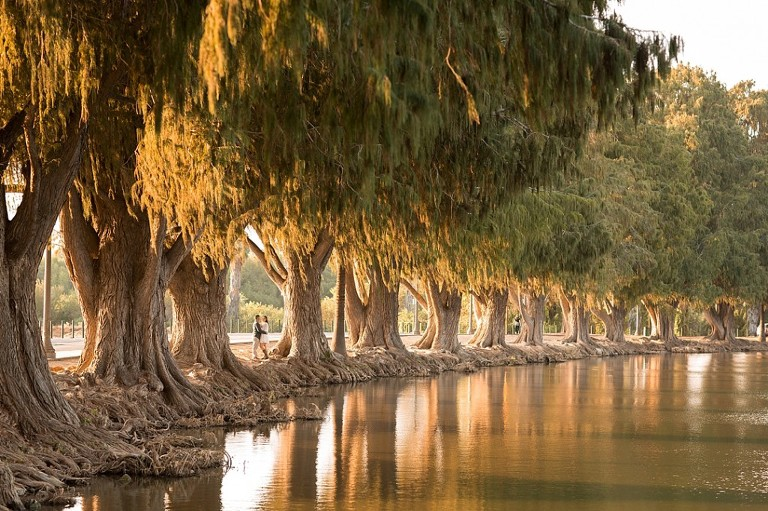 Fairmount Park Riverside California Engagement Session destination photographer from Inland Empire_0027